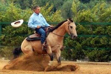 Scrivi per noi – La monta da lavoro: alle origini del mito western.