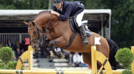 Un cavallo Oldenburg per Ashlee Bond