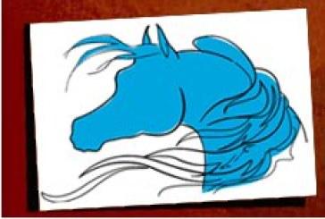 Campionati Lombardi Pony 2011
