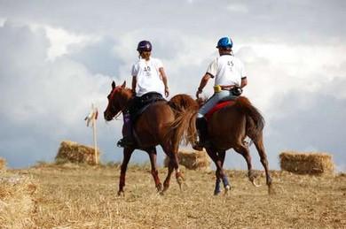 La Fei annulla le ultime gare di endurance in UAE