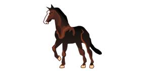 Icone sui cavalli per il tuo PC: gratis per te