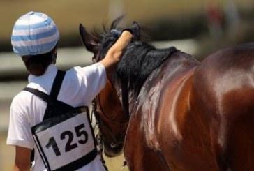 Completo: Arcinazzo incorona Ludovica Bolaffio nella Coppa Italia pony 2*