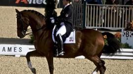 Dressage Olimpico – Pubblicata la lista lunga dei giudici