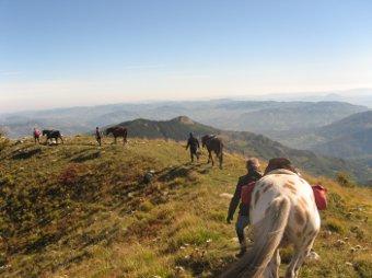 Turismo equestre FISE: obiettivo 5 terre