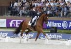 Dressage, due cavalli olandesi fuori dai giochi per i WEG