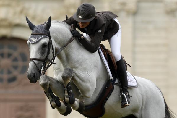 GFE e Penelope Leprevost investono in un giovane stallone