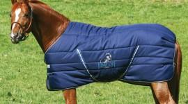 Belli caldi con le coperte Horseware per Jump Off