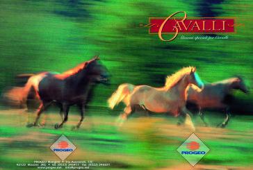 L'alimentazione del cavallo? Non dipende dalle mode!