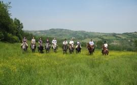 Turismo Equestre Fise, i viaggi di giugno