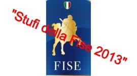 """Analisi e proposte dagli """"Stufi della FISE 2013"""""""