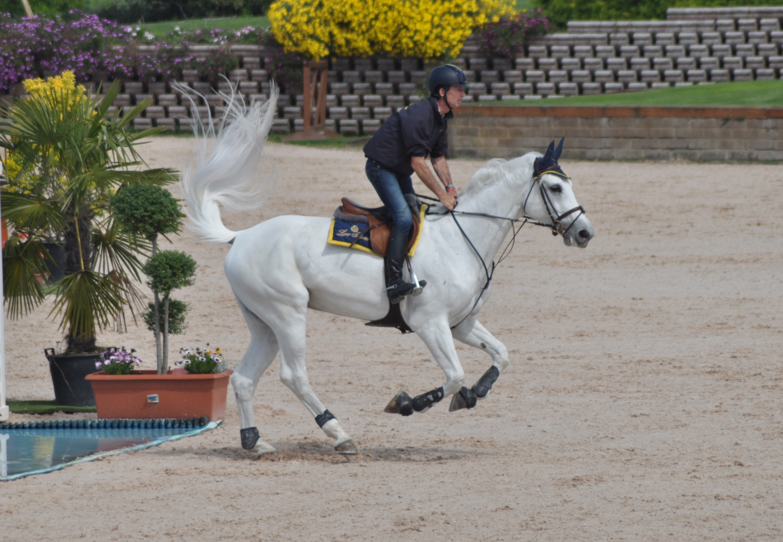 All'Horses Riviera Resort iniziano i Campionati 2014 di salto