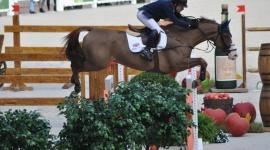 Kingsland Oslo Horse Show, Michael Whitaker conquista il GP