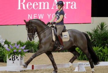 Reem Acra Fei World Cup Final, schooling sessions draw large applause