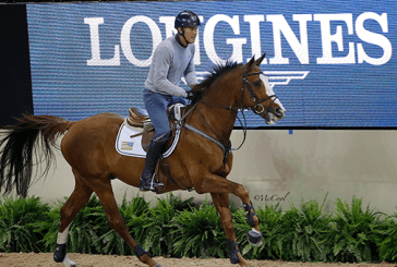 Longines Fei World Cup Final, jumpers warm up