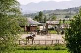 Horses Le Lame: a Montefalco i Campionati Italiani di Dressage