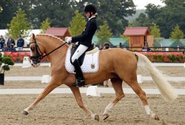 Addio Deinhard B, muore il super pony campione d'Europa