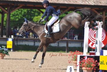 Il benessere delle articolazioni del nostro cavallo