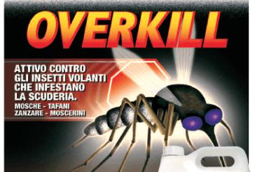 Chifa informa, come combattere il virus Zika