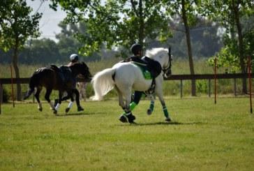 Coordinatori e tecnici dei pony mounted games si rivolgono al futuro Presidente Fise