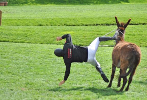 La corsa degli asini, la prova più divertente del Toscana Tour