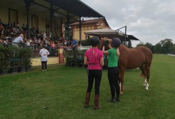 """""""Per capire il tuo cavallo gira lo specchio verso di te"""". Le parole di Andrew McLean in chiusura di ISES Rome 2018"""