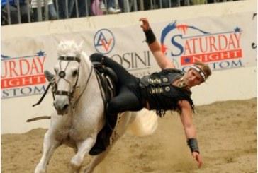 Associazione Italiana Cavallo Americano