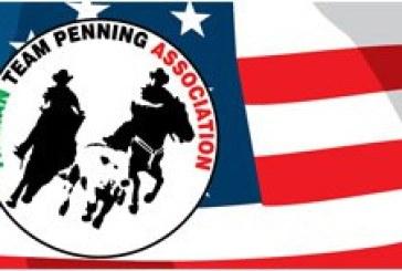 Italian Team Penning Association