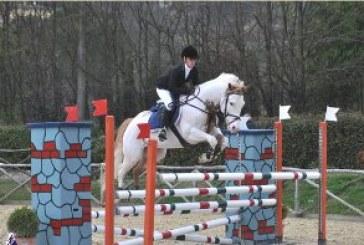 Paint Horse Club Italia