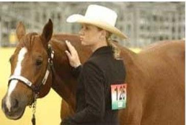 Associazione Italiana Quarter Horse
