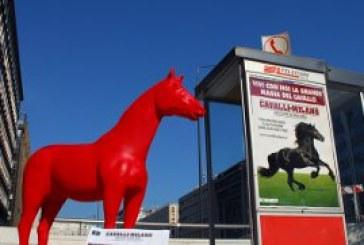 Cavalli a Milano