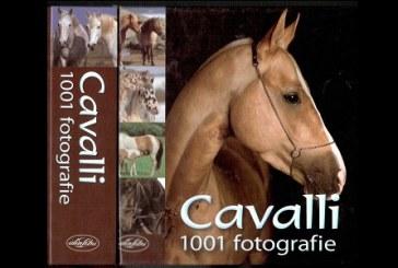 Vinci con DotHorse.it il bellissimo libro Cavalli, 1001 fotografie