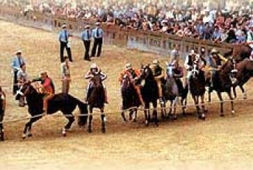 Palio di Siena: muore cavallo durante la quarta prova