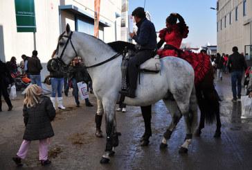 Dimostrazioni, esibizioni, personaggi e passioni del popolo dei cavalli