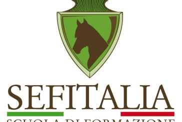 Sef Italia – Campionato pony, arrivano patrocini importanti
