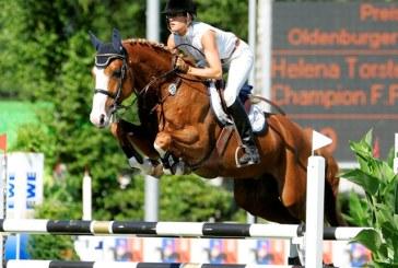 Il 2012 porta 3 nuovi cavalli nelle scuderie di Marcus Ehning