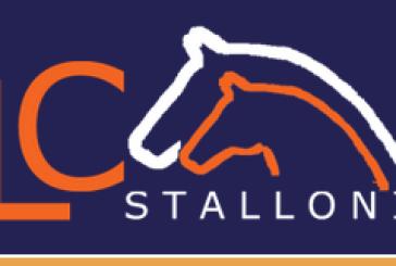 La LC Stalloni lancia un sondaggio: che stalloni vorreste per la vostra fattrice nel 2013
