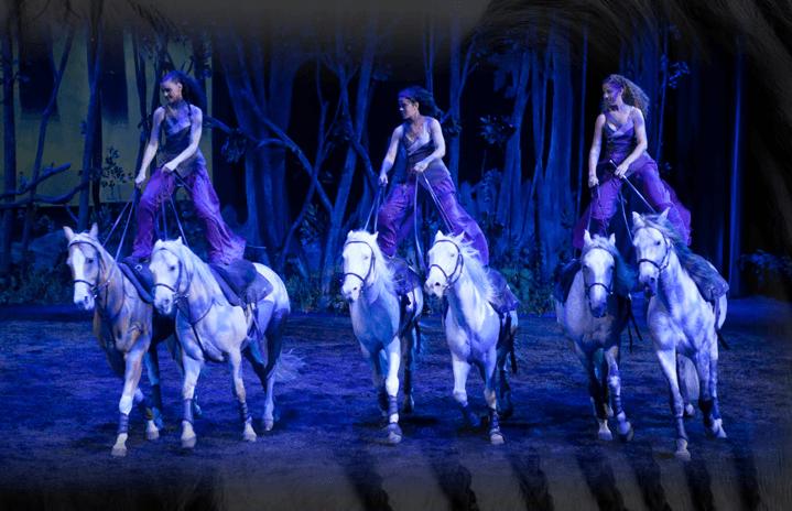 Spettacoli equestri: Odysseo il nuovo show di Cavalia