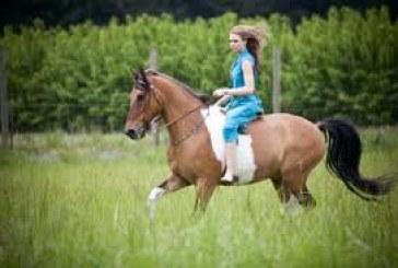 Sef Italia – 1° Corso di Accompagnatore Turismo Equestre a Cabiate