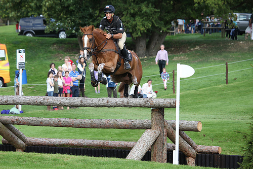 CIC Barbury, Andrew Nicholson is simply the best