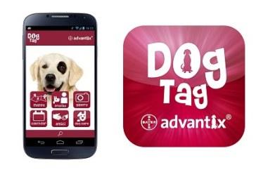 Per proprietari di cani molto digital