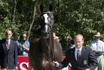 Un cavallo della Gran Bretagna non passa la visita alla vigilia degli Europei