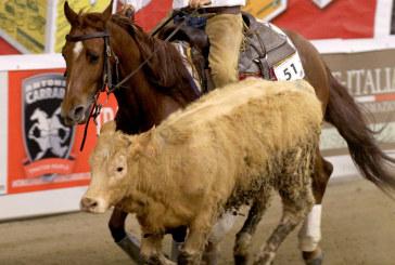 Salone del cavallo americano: Reined Cow Horse