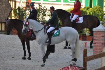 Bertram Allen alle Olimpiadi? L'Irlanda nomina Greg Broderick