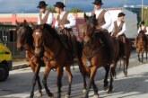Il Cavallo Maremmano