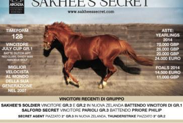 Gli stalloni del Centro Equino Arcadia: Sakhee's Secret