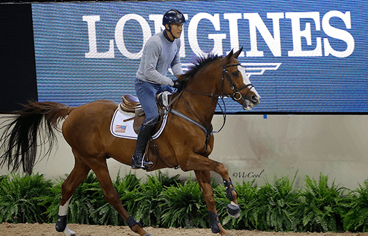 Fei World Cup Final Las Vegas, jumpers training sessions