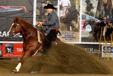Il Salone del Cavallo di Reggio Emilia si avvicina