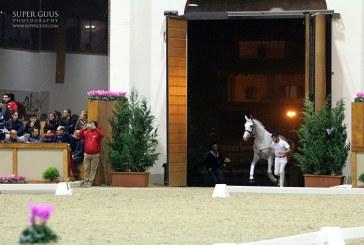 Le Scuderie della Malaspina aprono le porte alla Coppa Italia di Dressage
