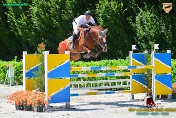 EH Liandero 3 e Halley EH, due cavalli del catalogo Euro Horse cambiano casa