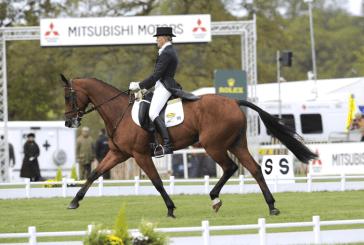 Tragica fine per l'olimpionica Gazelle de la Brasserie